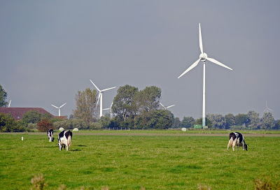 Image of Wind Turbines in Germany