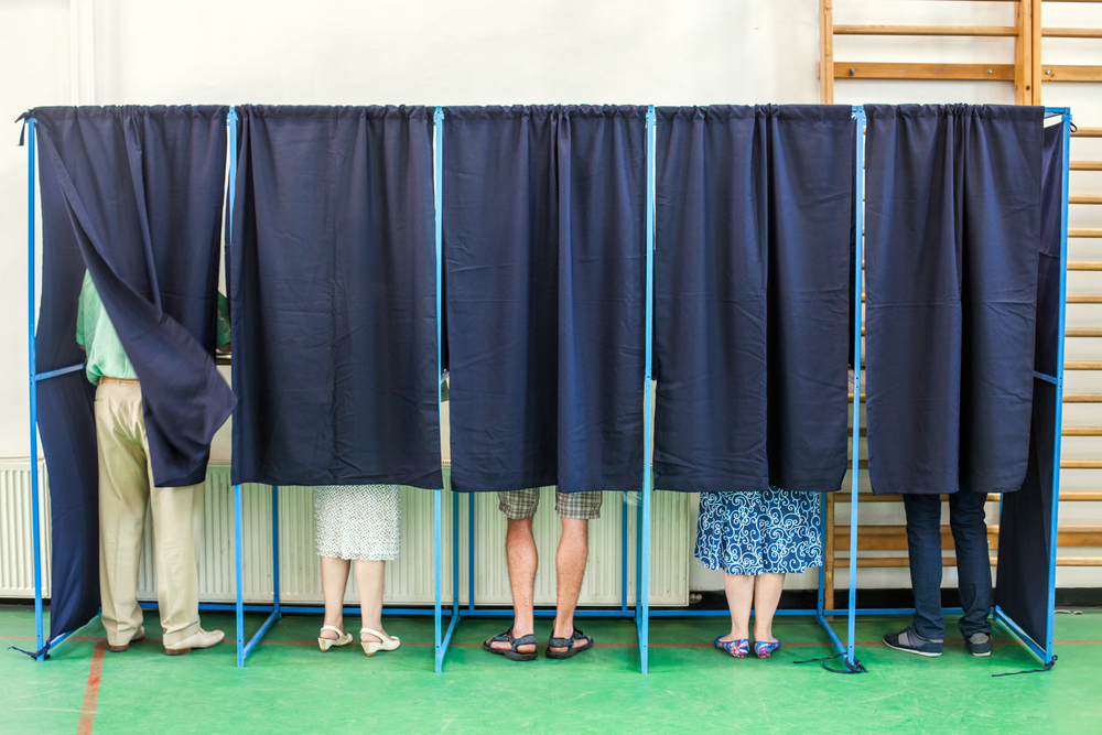 Image of people in voting booths.