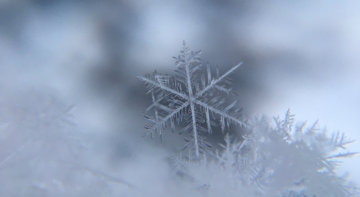 Photo of snowflakes by Damian McCoig via Unsplash