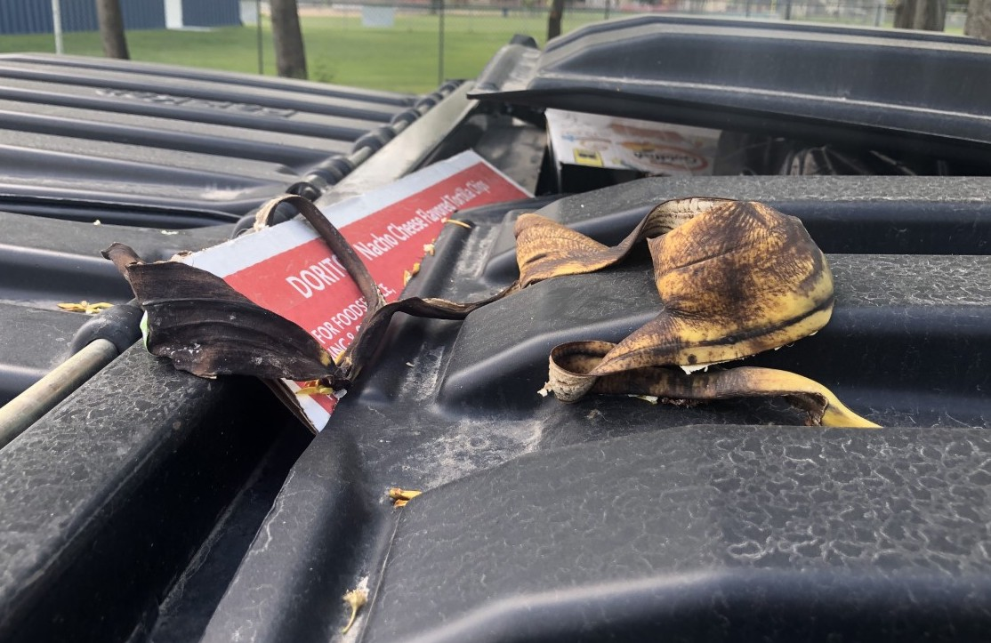 Picture of a decaying banana peel on top of a dumpster